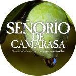 Señorio de Camarasa - Logo
